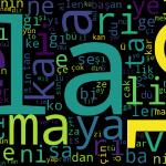 Türkçenin Heceleme Algoritması Üzerine